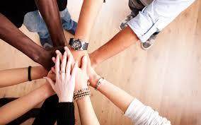 socio y colaborar
